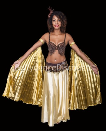 Gold belly dance Isis wings sleeves