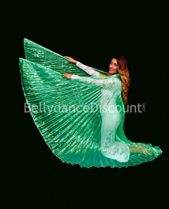 Green transparent belly dance Isis wings